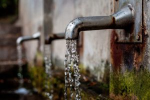 Живата вода - Златко Господинов - 3