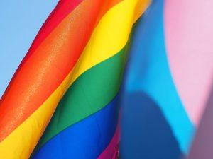 Има ли полът значение или: Quo Vadis, Homo Sapiens? - 9